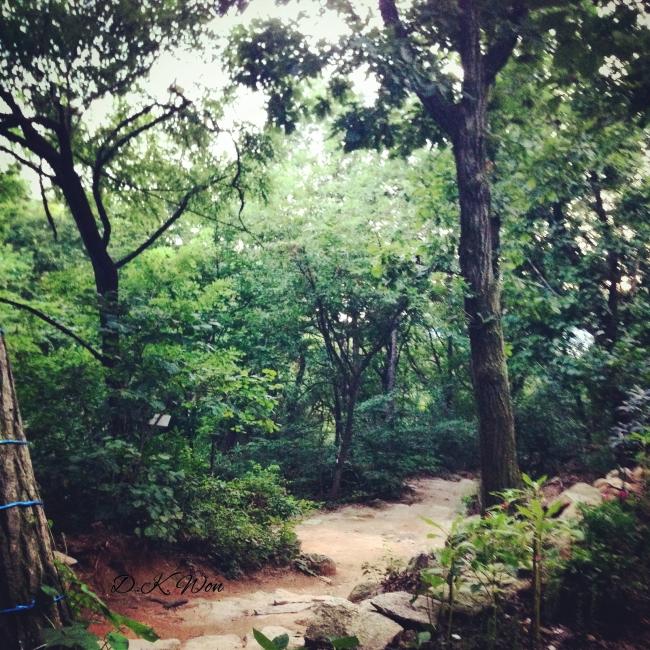 garden_Fotor