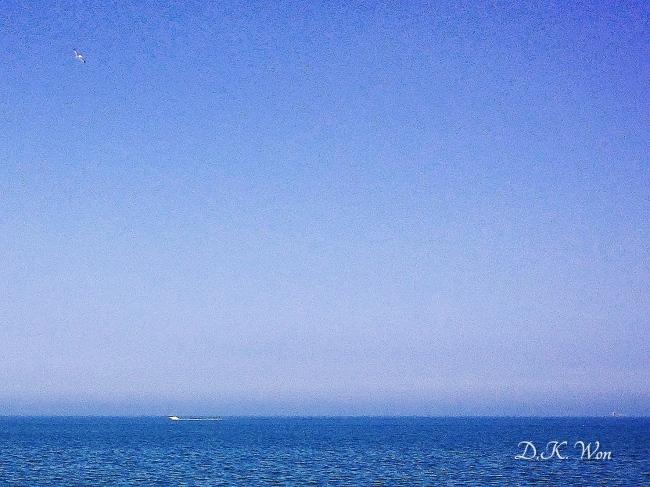 Water_Mi_[1]