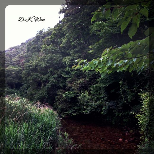 Nature_Fotor