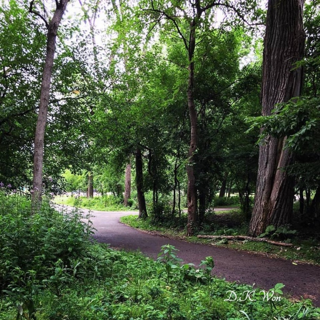 Park1_[1]