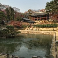 Huwon Secret Garden : 창덕궁 후원(昌德宮後苑) 비원(祕苑)
